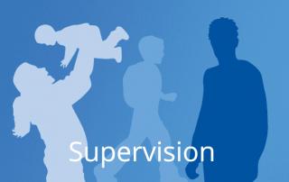 DGNE Supervision Termine